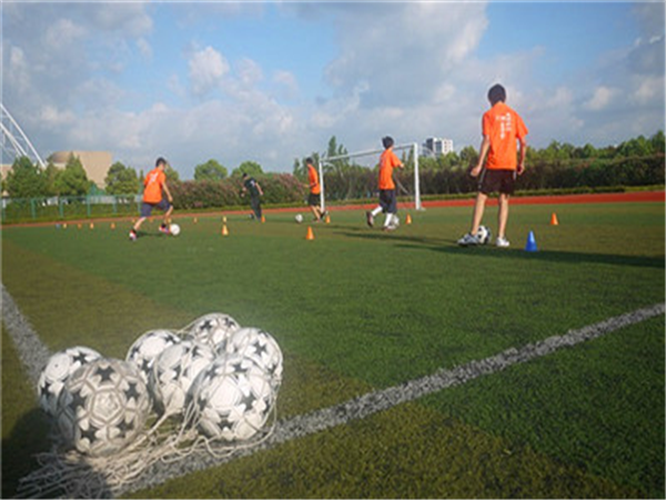 olymsus足球培训课程免费体验