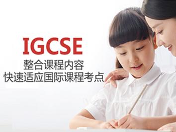 IGCSE学科课程